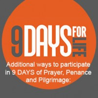 9-days-square